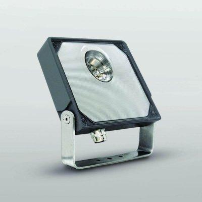 Lito Spotlight
