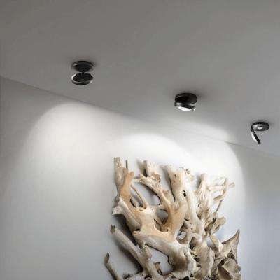 Nautilus Ceiling Light